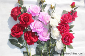 Real Touch Artificial Flowers Red Rose for Marriage Decoration pictures & photos