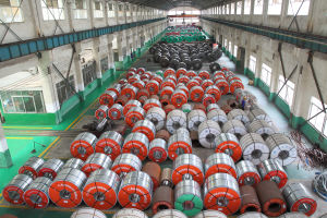 Af-35e Green Color Coated Coil pictures & photos