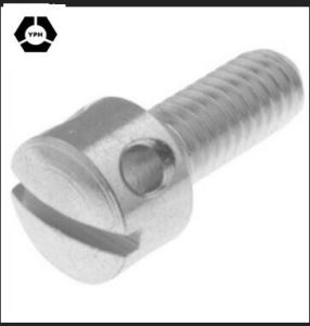 DIN 404 Stainless Steel Slotted Capstan Screws pictures & photos
