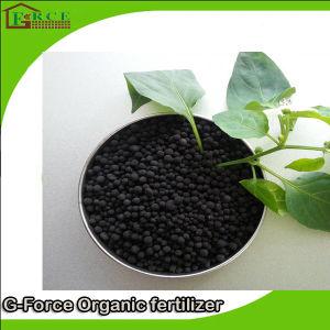 for Urea 85% Humic Acid Powder Organic Fertilizer Suitable for Additives pictures & photos