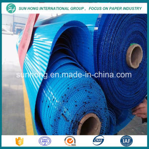 Polyester Spiral Press Filter Fabrics for Paper Making /Press Filter Wire pictures & photos