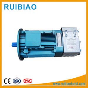11kw 15kw 18kw Hydraulic Gear Motor for Construction Hoist pictures & photos
