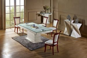 2016 Modern Style Marble Dining Table with Chair Set (TCT-005)