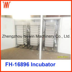Digital Commercial Duck Egg Incubator for Sale pictures & photos