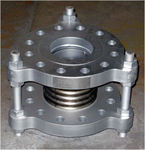Stainless Steel Flanges End Expansion Joint pictures & photos
