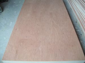 18mm Bintangor Plywood with Poplar Core pictures & photos