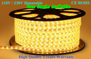 LED Lights SMD 230V 110V LED Strip Light pictures & photos