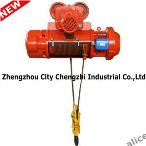 Electric Hoist Wire/Construction Hoist (200Kg-800Kg) pictures & photos