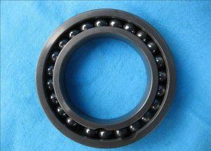 Si3n4 688 Hybrid Ceramic Bearing with PTFE Seal