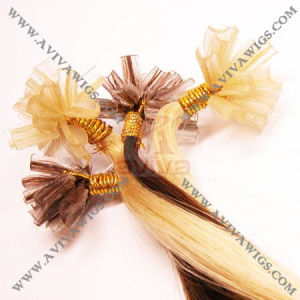 Nail Hair Extension pictures & photos