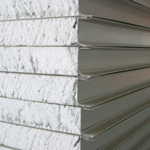 Foam Sandwich Panel for Wall /Roofing pictures & photos