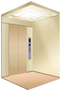 Warm House Elevator for Home Using (LL-114) pictures & photos