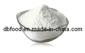 New Crop White Onion Powder