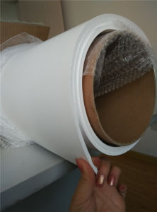 100% Vrigin Expanded PTFE Sheet pictures & photos