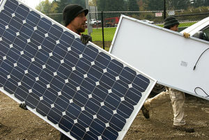 290W Mono Crystalline Solar Panel pictures & photos
