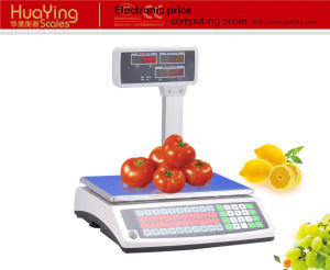 Electronic Scale (ACS-650) pictures & photos