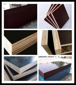 Printed WBP Glue Hardwood Core Red Film Faced Plywood