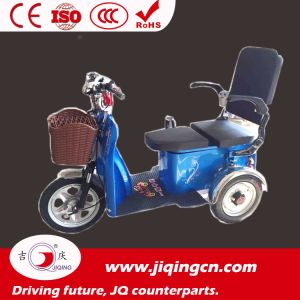 14 Inch 48V 350W Lithium Battery Electro-Tricycle pictures & photos