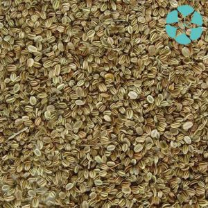 Fructus Cnidii Extract / Cnidium Monnieri Extract / Osthole pictures & photos