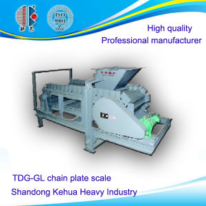 Tdg Gl Chain Plate Scale for Powder or Granular Material Conveying