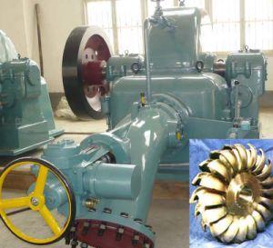 Pelton Hydro (Water) Turbine Generator Unit