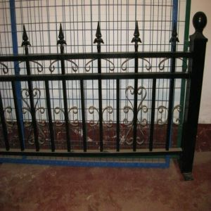 Iron Art Fence pictures & photos