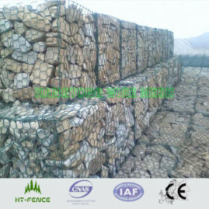 Galvanized/ Plastic Gabion Mesh pictures & photos