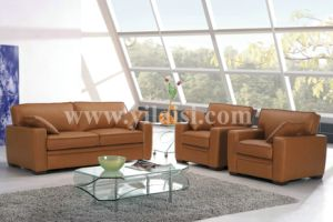Leisure Sofa (D29)