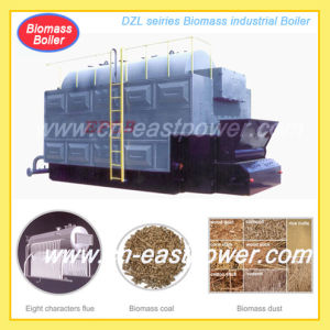 Rice Husk Boiler pictures & photos