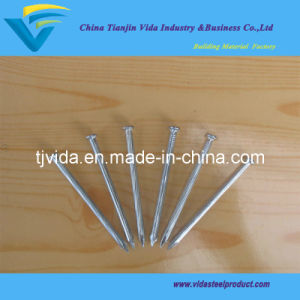 "Galvanized Steel Concrete Nails (3/4"") pictures & photos"