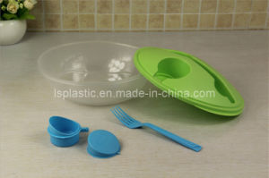 Plastic Lunch Box with Spoon (LS-1033)