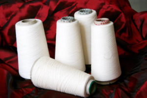 100% Cotton Yarn/Spin (CS)