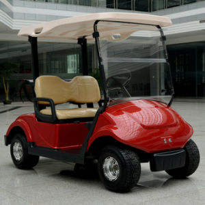 Dongfeng Electric Golf Car with 2 Seater pictures & photos