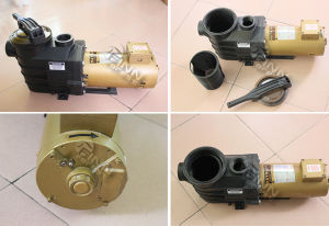 2017 Used Hayward Water Pump Sale Swimming Pool Pump pictures & photos