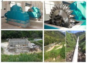 Pelton Turbin/Water Turbine/Waterturbine/ Hydro Turbine/ Hydroturbine pictures & photos