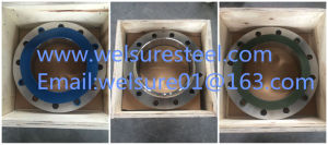 Wn Dn 250 F316L 300lb Stainless Steel Flange