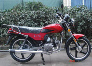 Street Bike (WJ100)