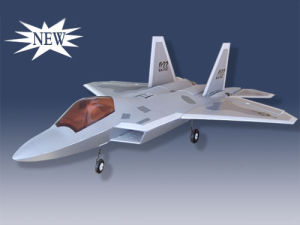 Eagle Airplane SAPAC-22(F-22)