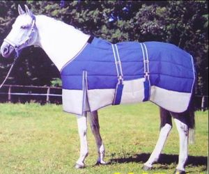 Blue Warm 420d Stable Horse Rugs (SMR1558) pictures & photos