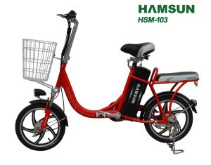 Electric Bike (HSM-103)