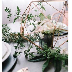 Flower Hanging Brass Tillandsia Air Plant Rack Geometric Holder pictures & photos