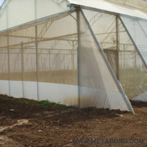 HDPE Insect Mesh Net for Greenhouse Plastic Product pictures & photos
