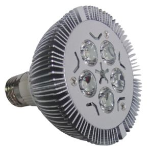 LED  PAR Light (PAR30 5*1W)