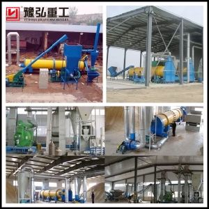 Wood Chips Dryer/Sawdust Drum Rotary Dryer Price for Sale pictures & photos
