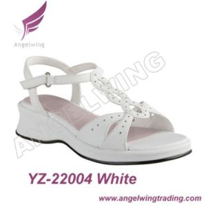 Children Fashion Sandal (YZ-22004)