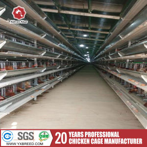 Chicken Egg Layer/Pullet Battery Automatic H Type Automatic Cages pictures & photos