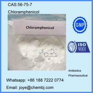 Powder Antibiotics Pharmaceutical Chloramphenicol for Bacterial Infections Treatment CAS 56-75-7 pictures & photos