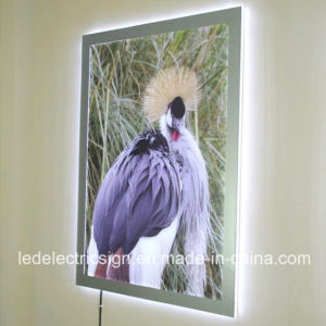 Frameless Acrylic for LED Light Box Sign pictures & photos