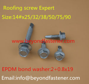 Tek Screw Self Drilling Screw Roofing Screw Tapping Screw Bolts pictures & photos