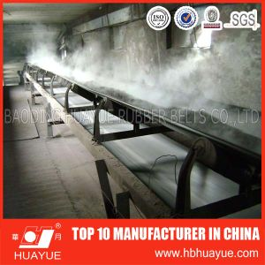 Chemical Resistant Rubber Conveyor Belt for Paper Mill pictures & photos